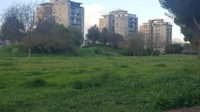 Palermo, Sport e Verde: pubblicato avviso gestione spazi pubblici